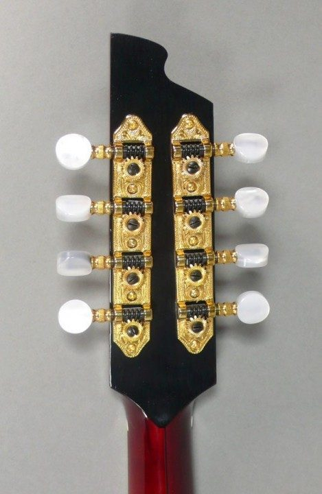 Gold Etched with Pearl Buttons  Tuners