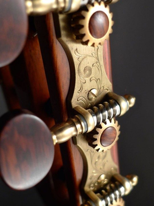 Alessi Gold Tuners with Snakewood Buttons