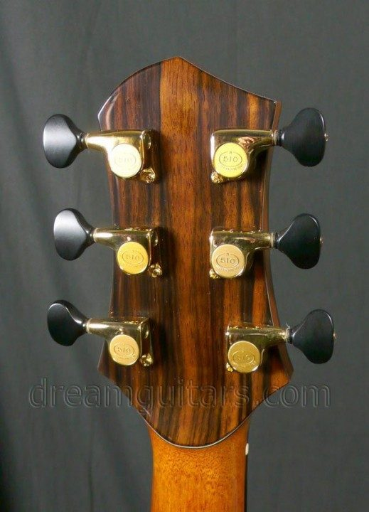 Gold Gotoh 510s with Ebony style Buttons