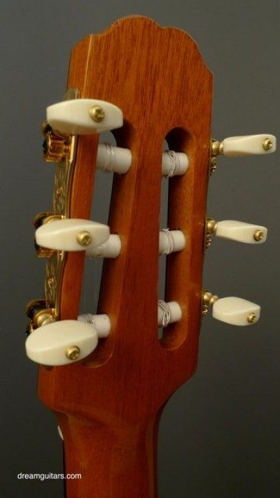Gotoh Rodgers Style Gold With Ebony Buttons