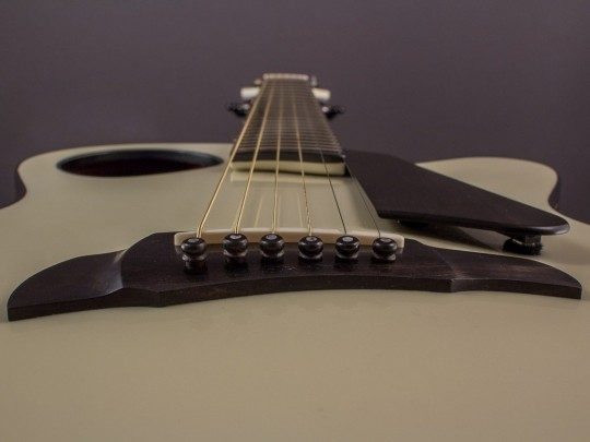 "Brand New Ribbecke ""Imagine"" Halfling Pin Bridge Archtop, Indian Rosewood/Cedar"