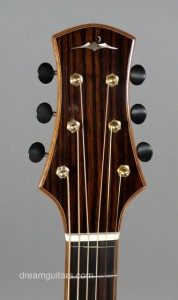 The Chubbuck Rogue Headstock.